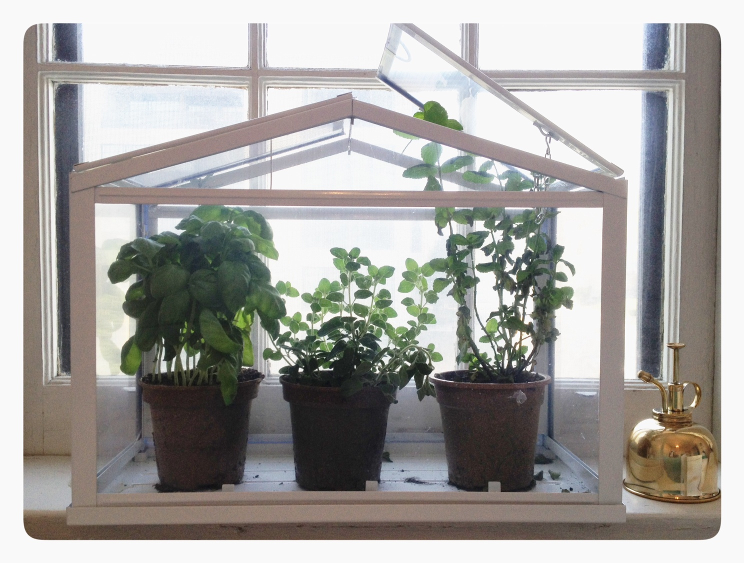 Indoor Herb Garden Greenhouse Garden Stacker Planter