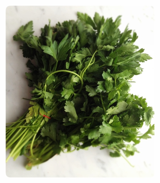 Fresh Parsley and Cilantro Chimichurri Sauce