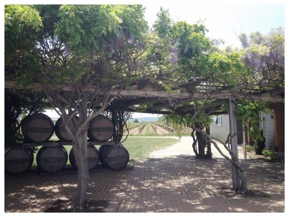 Inniskillin Winery Niagara on the Lake